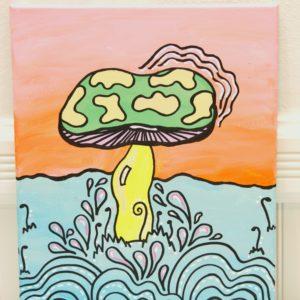 mr mushroom