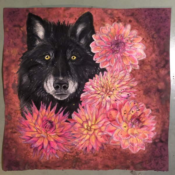 Wolf with Mums