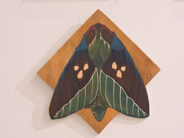 blue silk moth