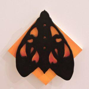 Warm Tiger Moth